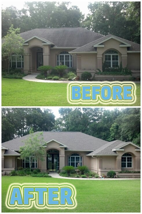 Cleaning Roof Shingles Before & After